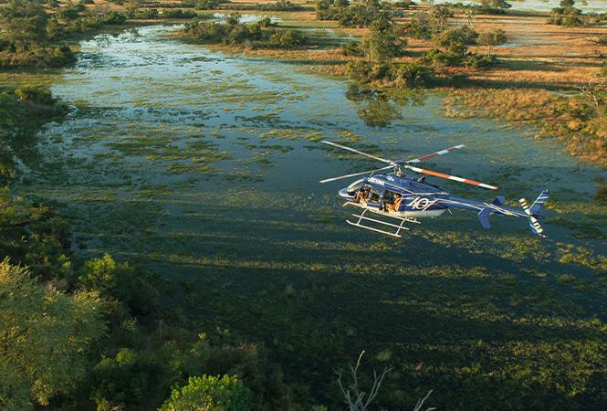 Safari experiences with Helicopter Horizons