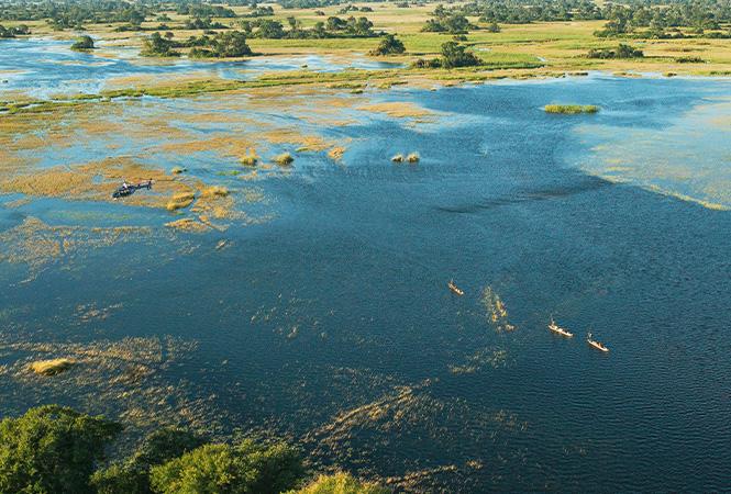 Mokoro experience through the wetlands of the Okavango Delta