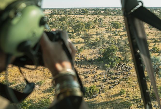 Doors off scenic flights over the Okavango delta