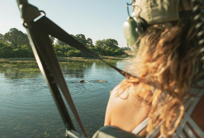 View of the waterways and wildlife of Botswana
