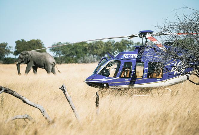 Okavango Helicopter Safari