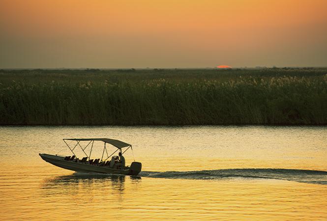 Morning boat ride through Okavango delta