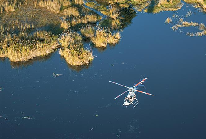 Scenic flights over the Okavango delta in Botswana