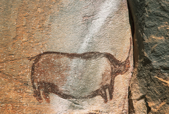 Ancient rock painting in the Tsodilo Hills
