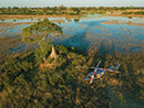 Create priceless memories with a tour across the wild plains Botswana has the offer