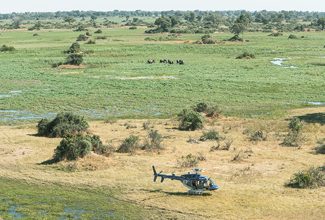 Helicopter safaris experiences