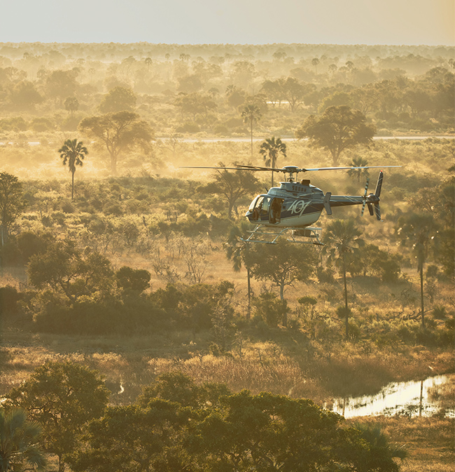 Helicopter safaris with helicopter horizons